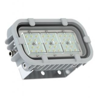 Светодиодный светильник FWL 31-21-850-D60
