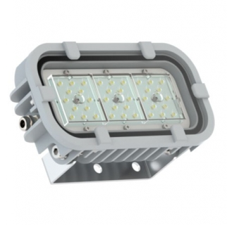 Светодиодный светильник FWL 24-28-850-D60